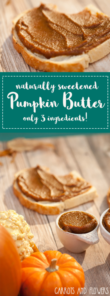 The BEST Fall Snack | Naturally Sweetened Pumpkin Butter Recipe | No Refined Sugar | Quick and Easy | Fall Desert